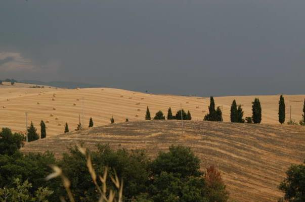 Val d'orcia agosto 2004 14