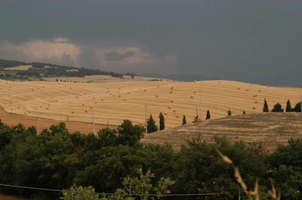 Val d'orcia agosto 2004 21