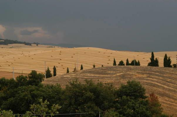 Val d'orcia agosto 2004 22