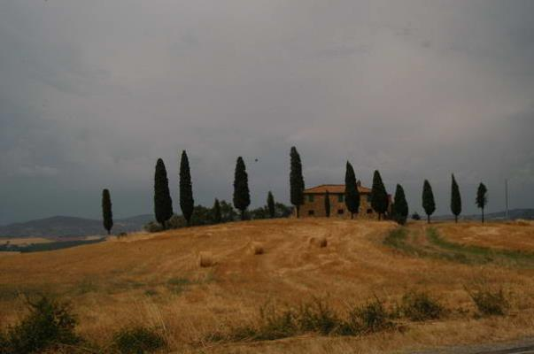 Val d'orcia agosto 2004 28