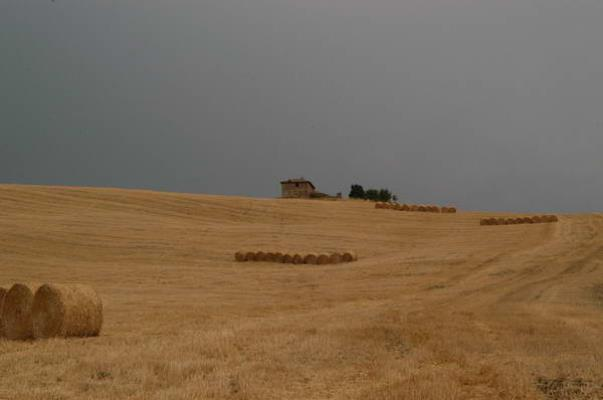 val d'orcia agosto 2004 01