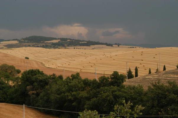 val d'orcia agosto 2004 20